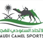 بدء التسجيل في كأس الاتحاد السعودي للهجن من يوم الثلاثاء القادم